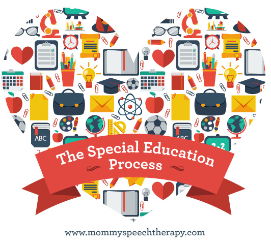 Essay About Special Education Needs